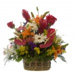 Flower Shop 77084