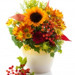 Florist 77084