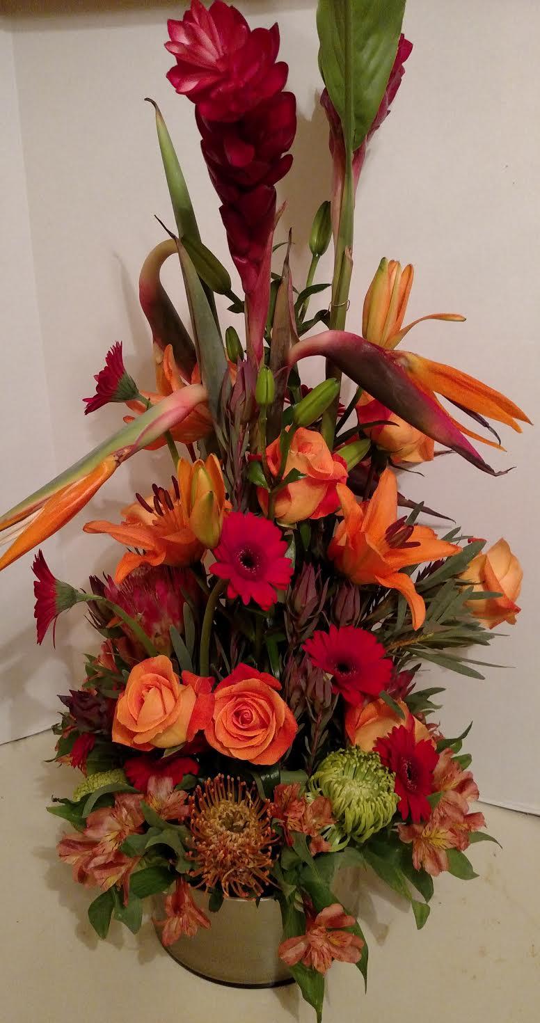 Flower Shop Houston Tx Exotic Flora Arrangements