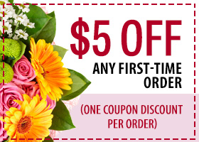 $5 off any first-time order
